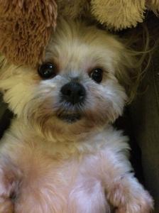 My Lola :)