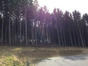 Der Westerwald.