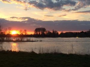 Sonnenuntergang am Rhein. Sunset along the Rhine.