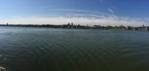 The Rhine in Mainz.