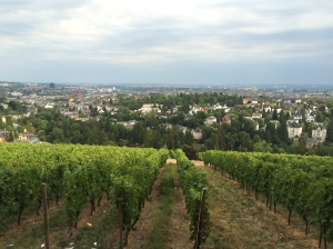 23/08 - The view over Wiesbaden from the Neroberg.
