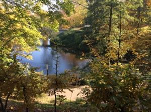 27/10 - Very autumn-y!